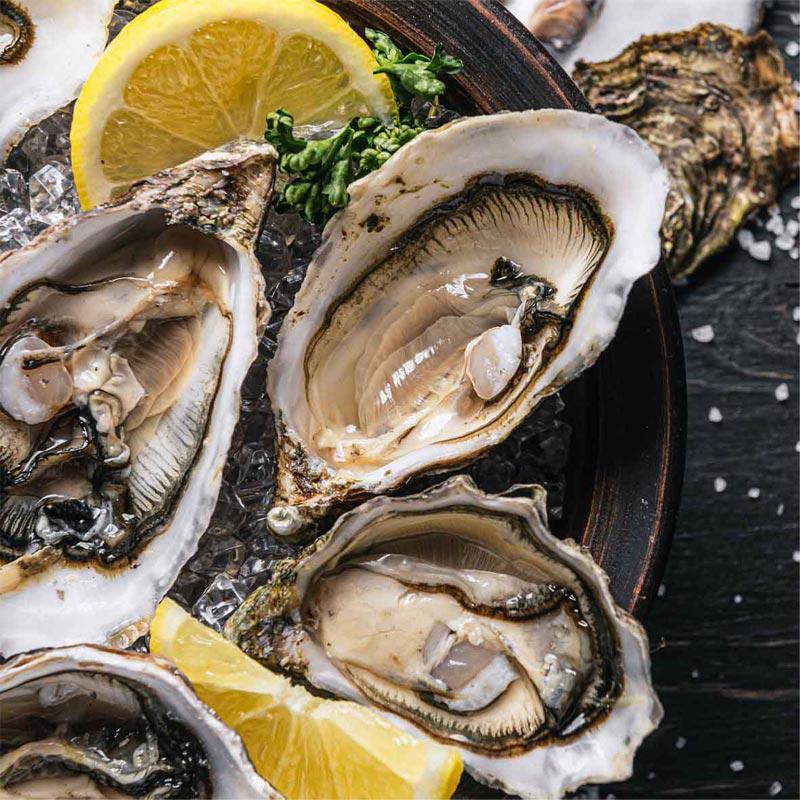 Frische Austern Grilladeau M4, 24 Stück