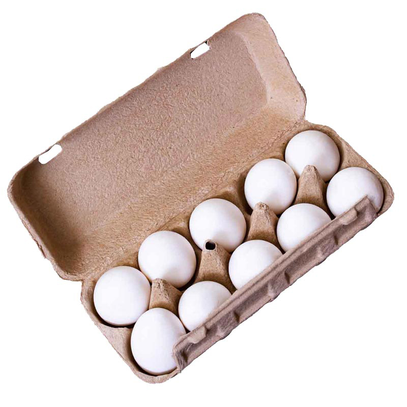 Eier aus Bodenhaltung Gr. L, 10 Stück